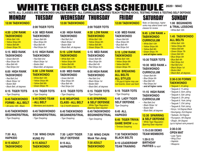 SCHEDULE YELLOW