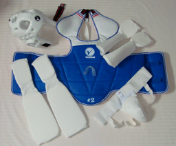 Set of Sparring Gear