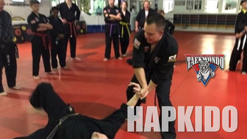 White Tiger Hapkido
