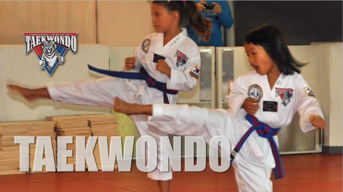 White Tiger Taekwondo for Kids